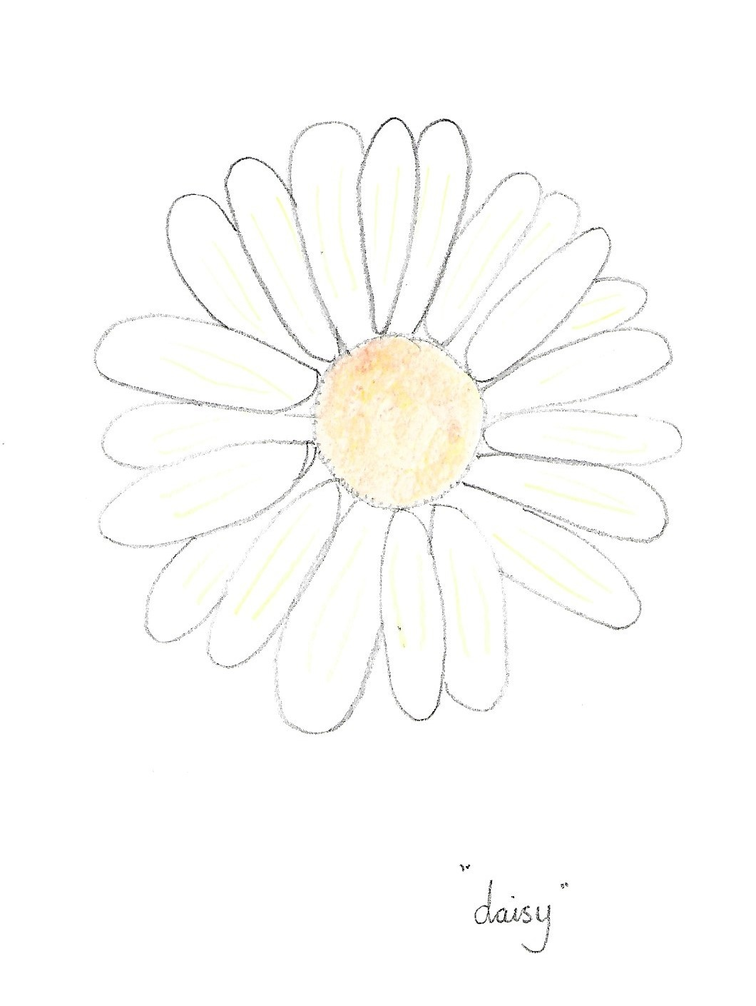 Daisy image for p 8&9